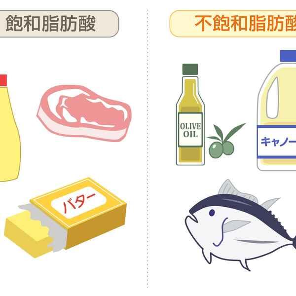 脂肪酸 は と 飽和 不