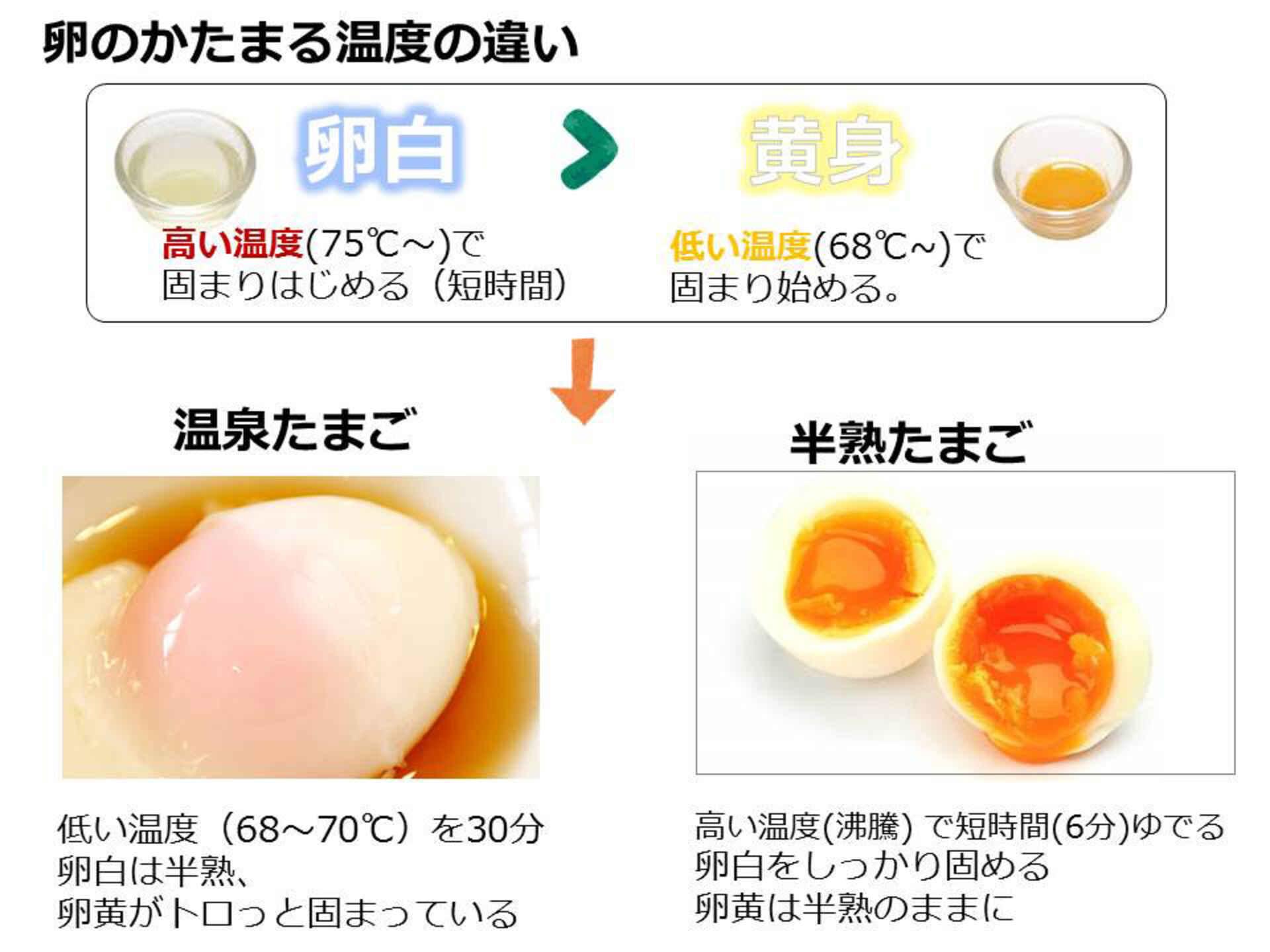 ゆで 卵 時間 水 から
