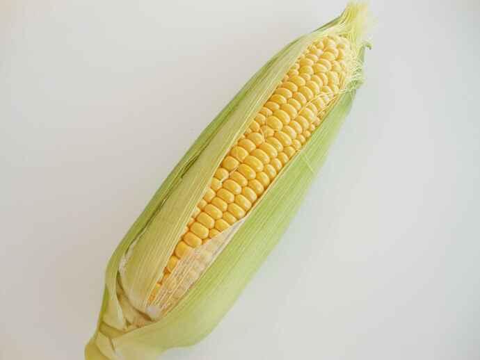 トウモロコシは炭水化物のほか、リノール酸、各種ビタミン・ミネラル、食物繊維なども含まれ、栄養価が高い